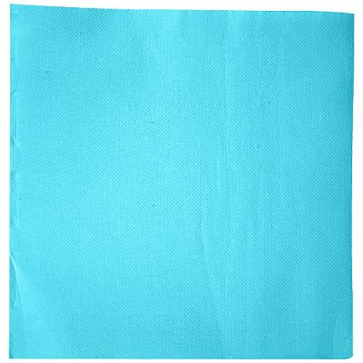 SERV 38X38 DBLE POINT TURQUOISE X50